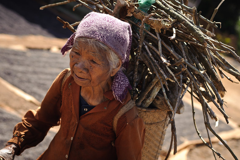 Old Vietnamese Woman Carrying Wood
