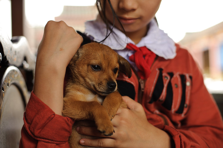Vietnamese Girl & Puppy