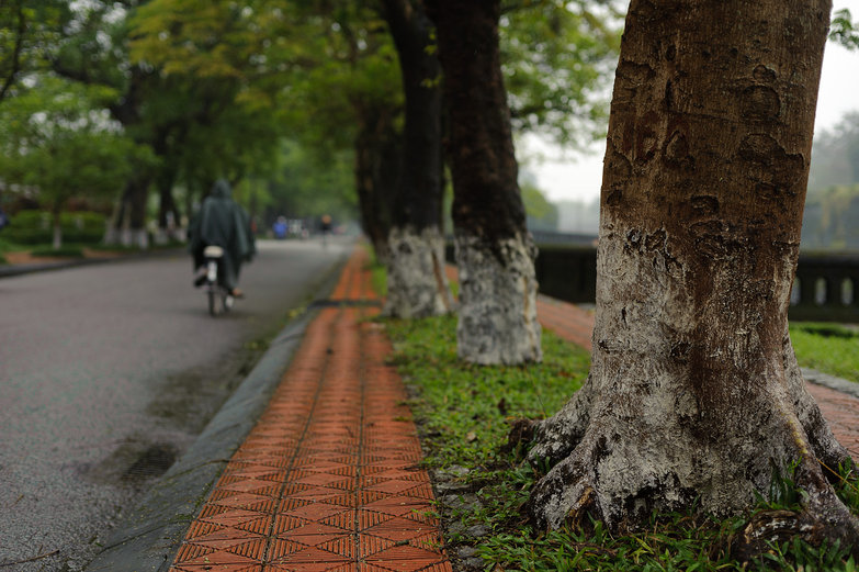 Rainy Day in Huế