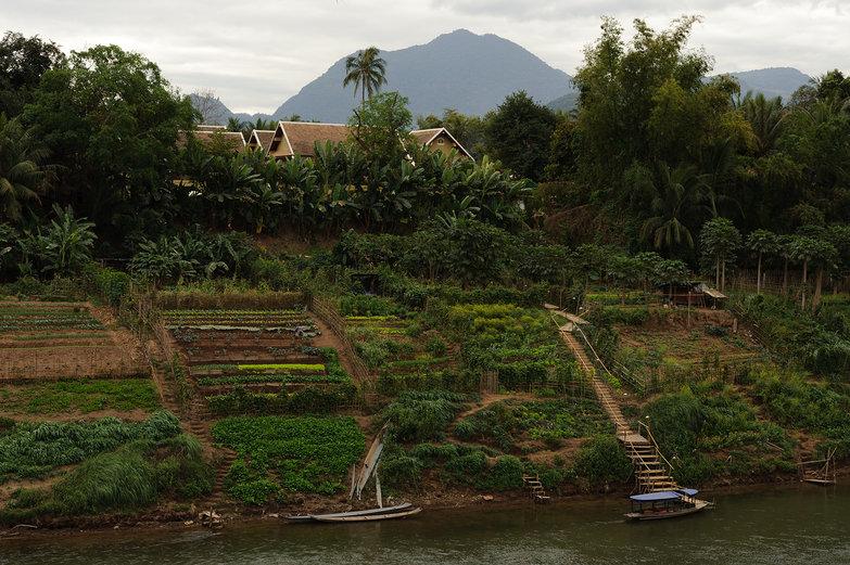 Luang Prabang Riverside View