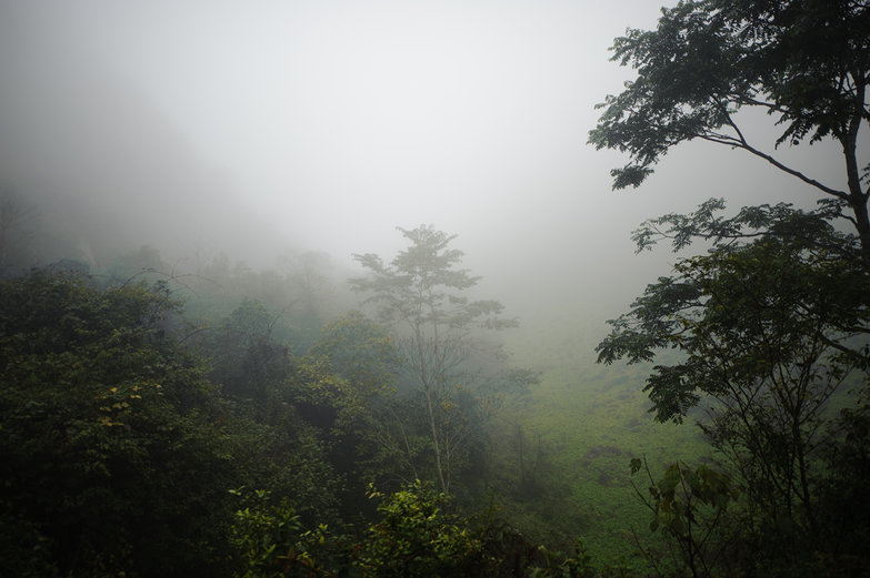 Mist Rising in Northern Lao