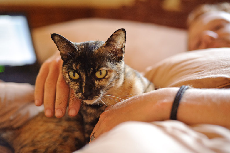 Tyler Cuddling Morning Kitty