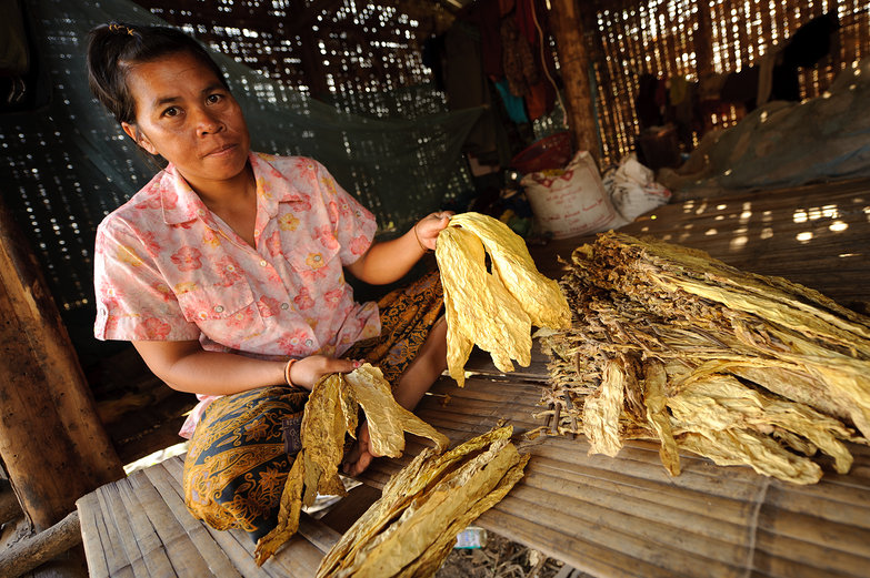 Lao Lady & Dried Tobacco