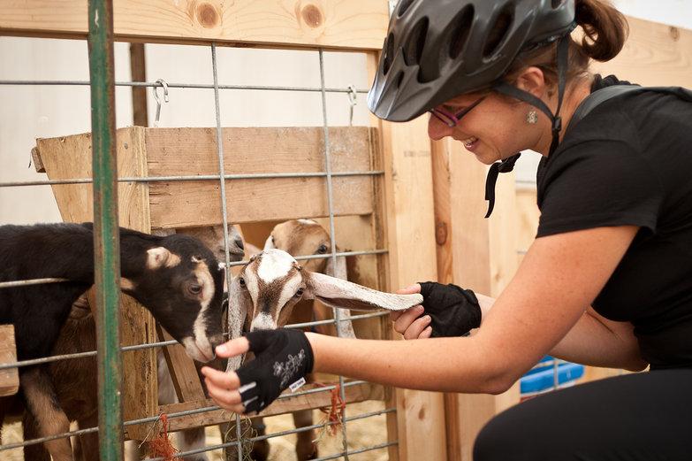 Tara Petting Goats