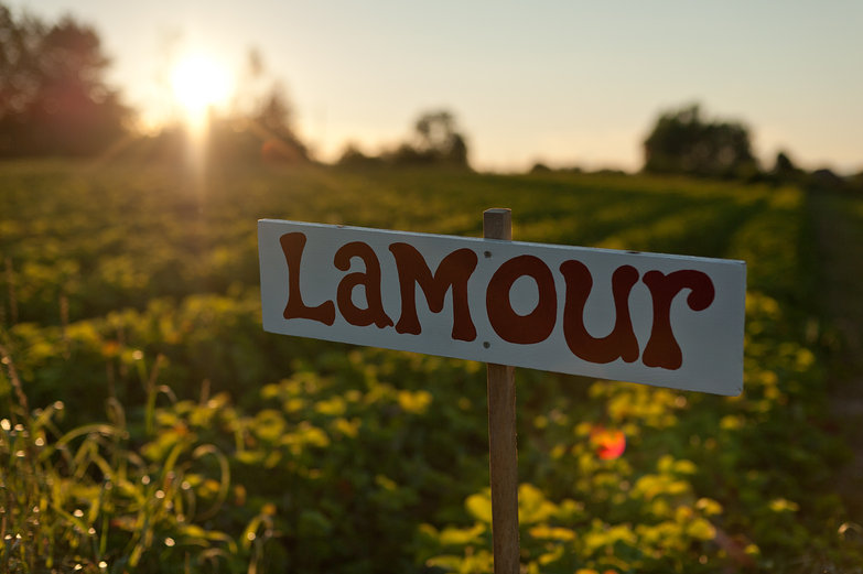 Lamour Strawberries Sign