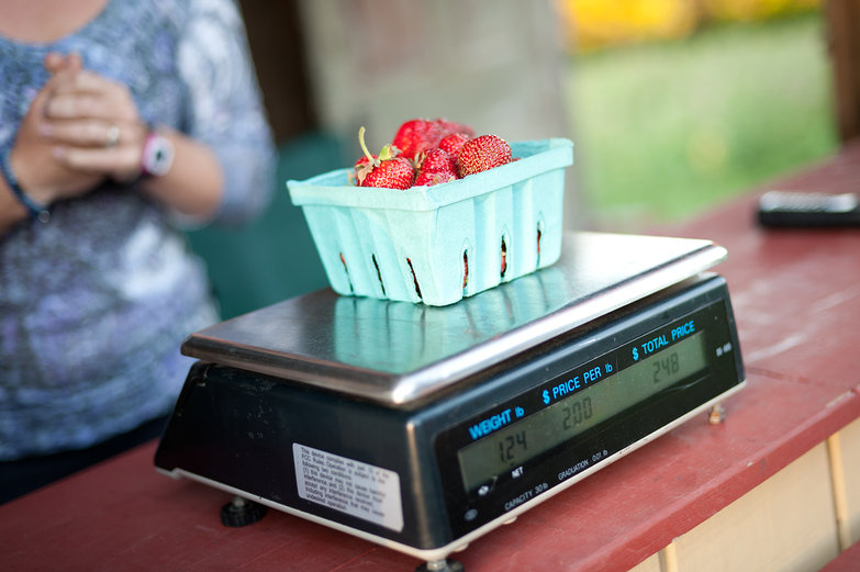 Weighing Strawberries