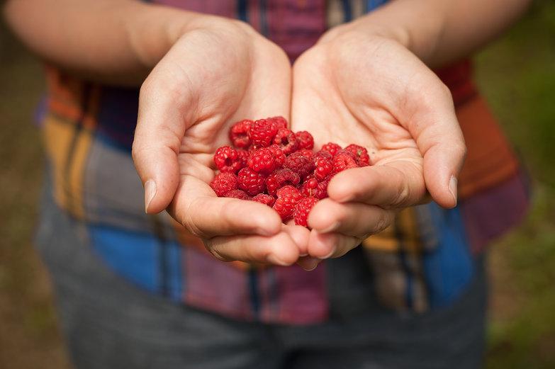 Eliza's Handful of Raspberries