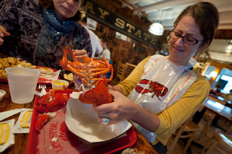 Tara Feels Barbaric, Tearing Apart a Lobster