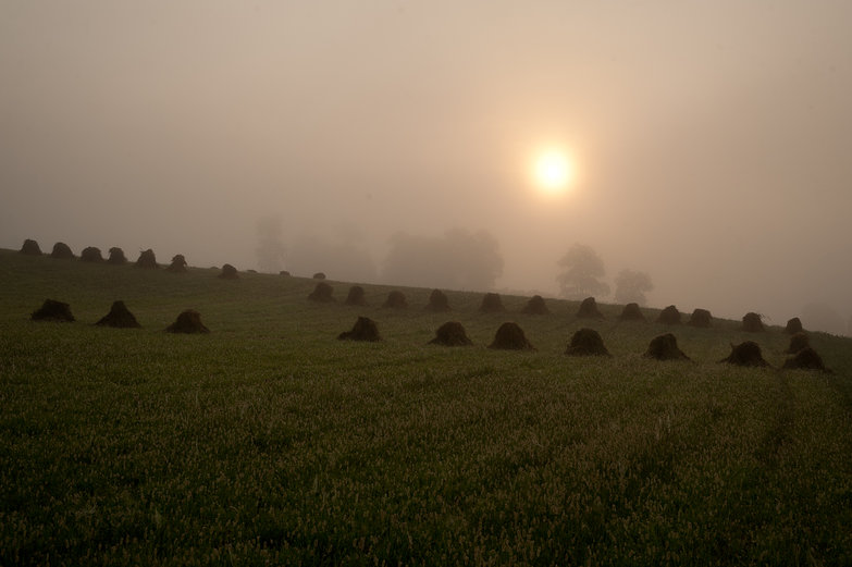 Misty Sunrise over Hay Stacks