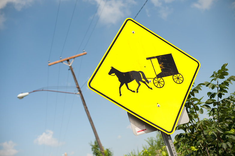 Buggy Crossing