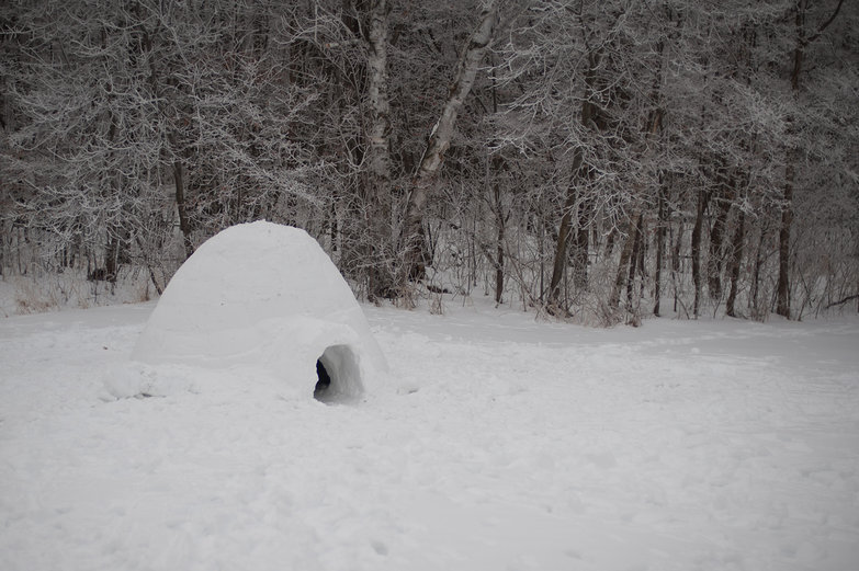 Igloo in the Frosty Morning Woods