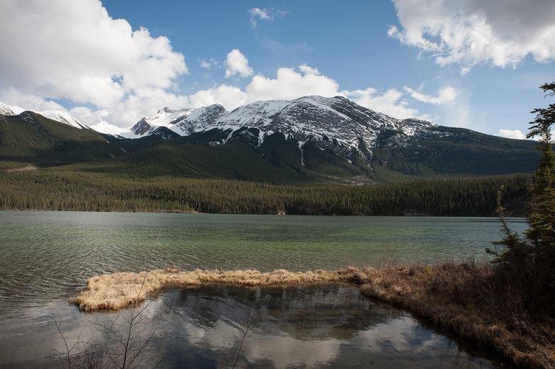 Jasper National Park Landscape