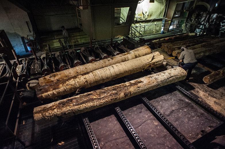 Hedstrom Lumber Mill