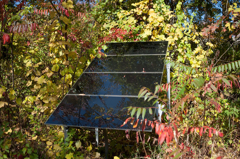 Solar Panels in the Woods
