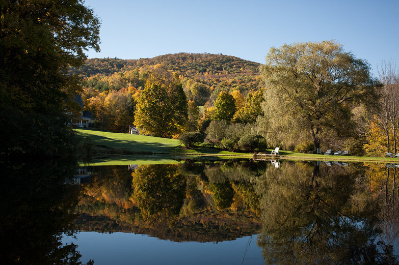 Vermont Pond Reflections