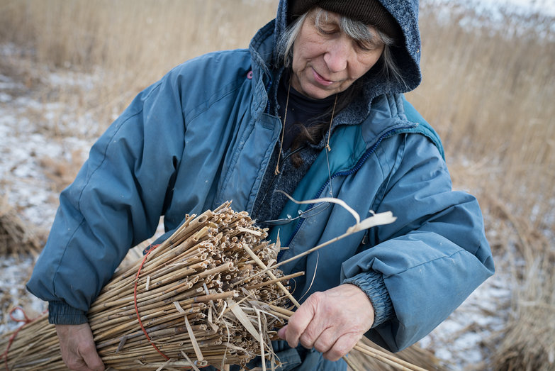 Deanne Cleaning Reed Bundle