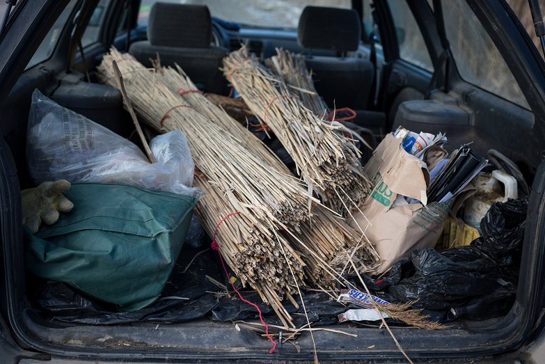 Reed Bundles in Car