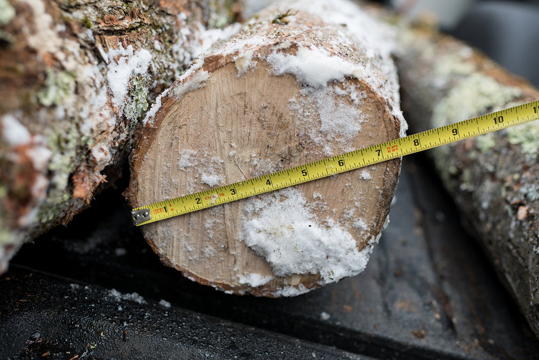 Measuring Log Diameter