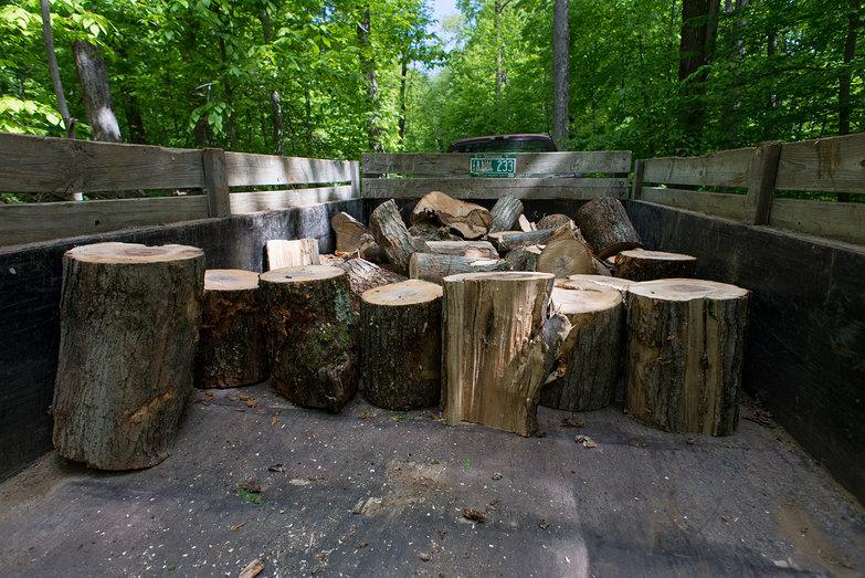 Dump Trailer w/ Wood