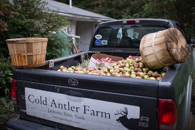 Cold Antler Farm Cider Apple Haul
