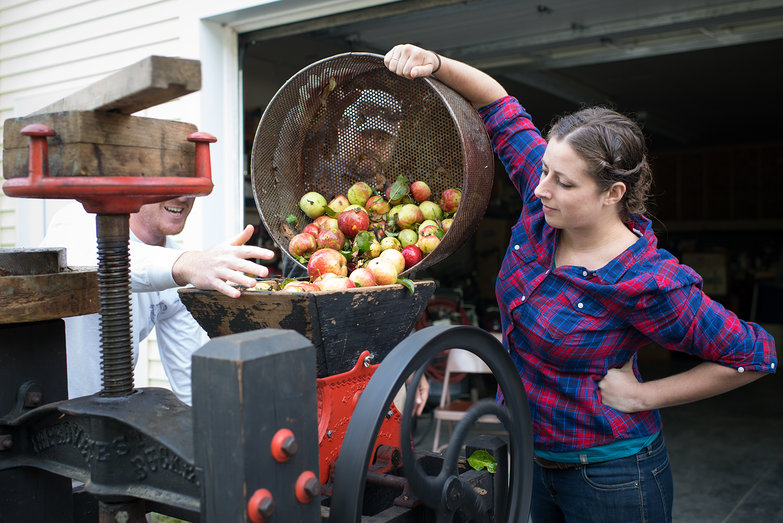 Tara Loading Apples into Cider Mill Hopper