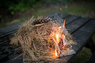 Pine Needles Catching Fire