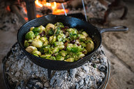 Brussels Sprouts Cooking Over Coals on Dutch Oven