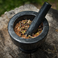 Twigs and Spices in Mortar w/ Pestle on a Wooden Stump
